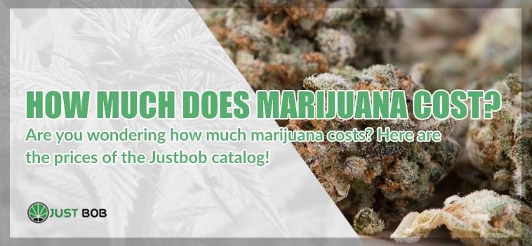 cbd marijuana cost