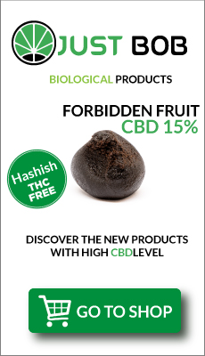 CBD Legal Hashish Forbidden Fruit