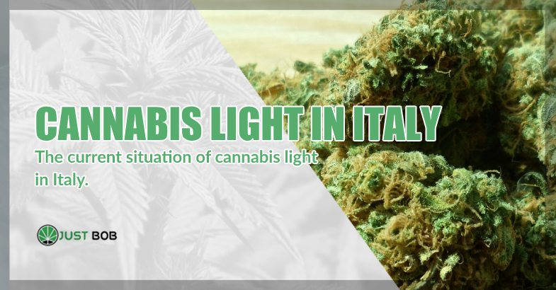 situation of cannabis light in Italy