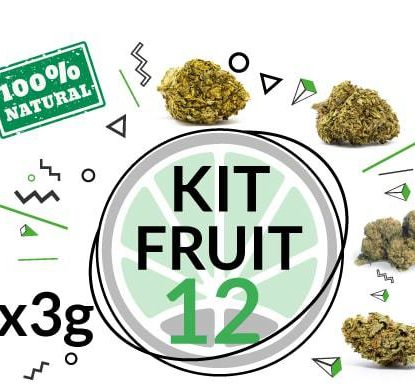 Fruit Kit 12 gr - 4 genetics of CBD weed