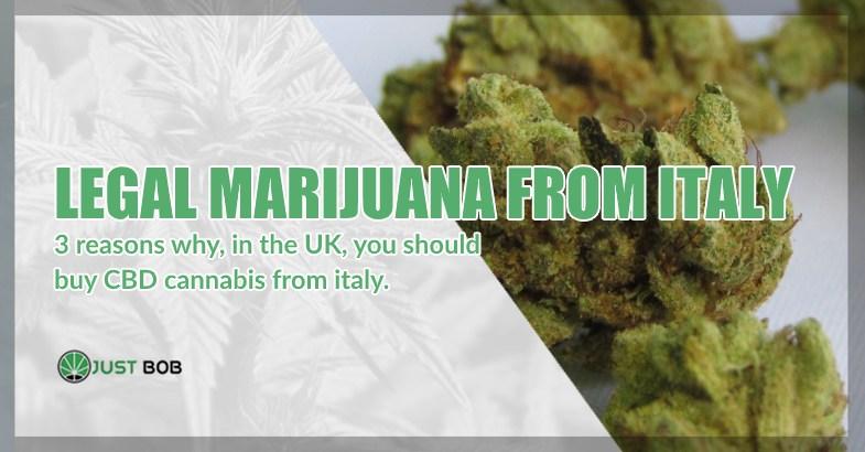 Legal marijuana from Italy