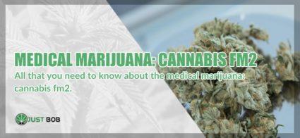 marijuana fm2 and legal hemp
