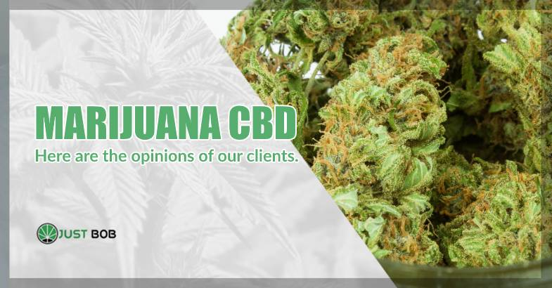 CBD weed uk opinions of clients