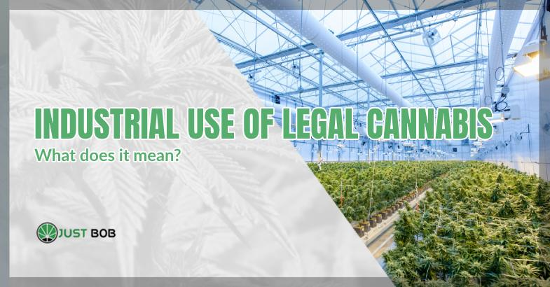 Industrial use of legal cannabis