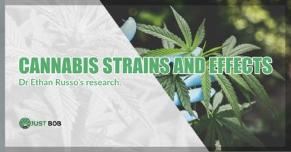 cannabis strains effects Dr Ethan Russo's research