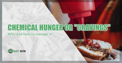 chemical hunger after marijuana