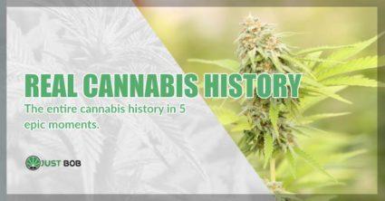 real cannabis history