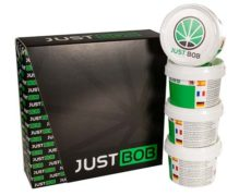 Kit Gold JustBob CBD weed