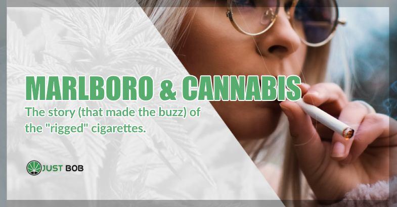 Marlboro & Cannabis story