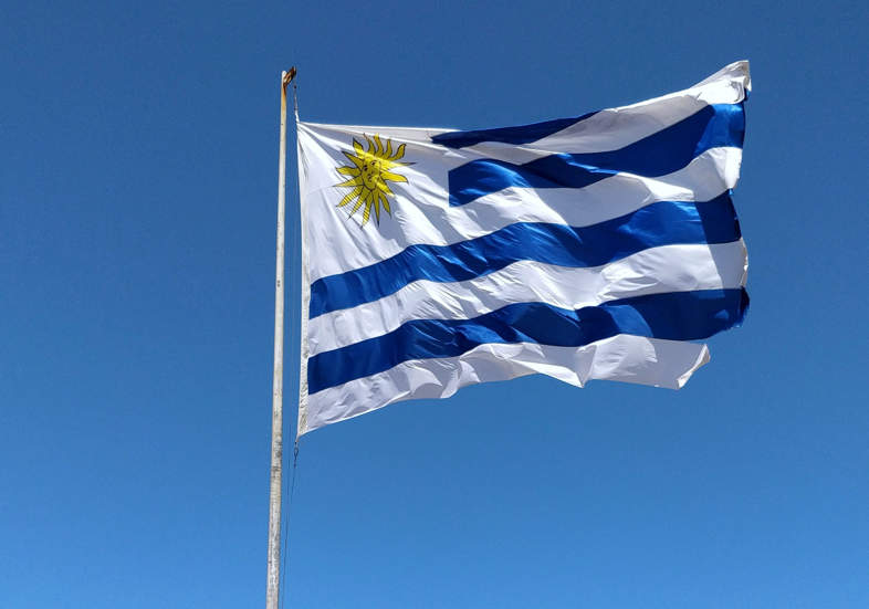 Uruguay, a country where Cannabis is a resource