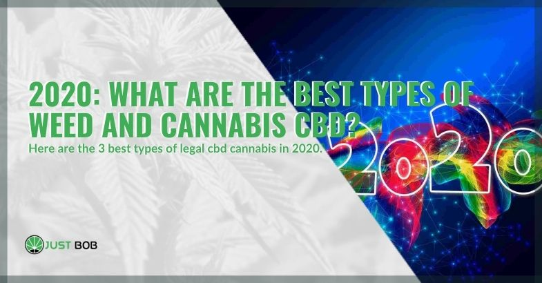 In 2020 here is the best CBD weed and cannabis