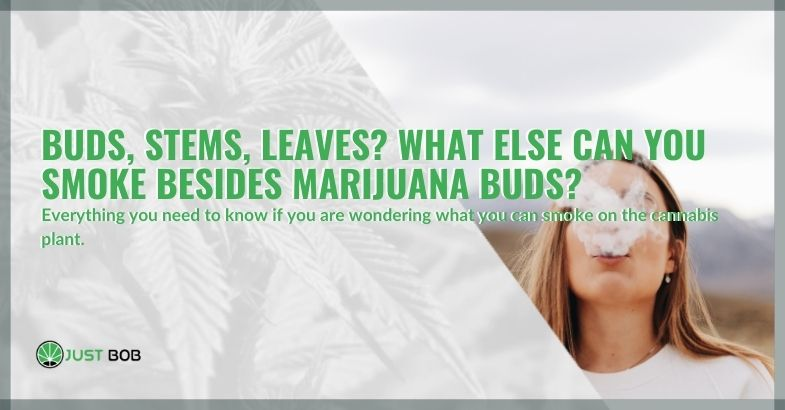 Buds, stems, leaves? What else can you smoke besides marijuana buds?