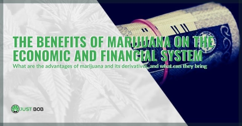 The economic and financial benefits of marijuana, which countries derive where it is legal