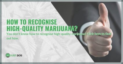 How to recognise high-quality marijuana?