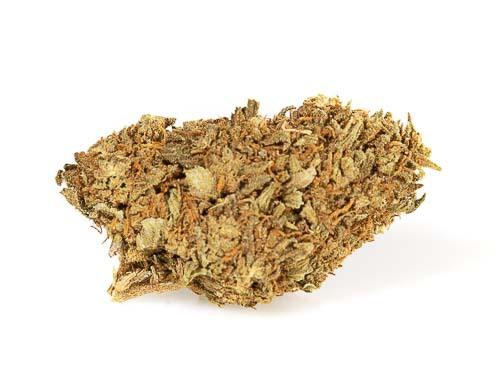 One of the best light hemp strains is Master Kush