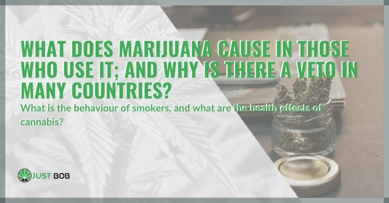 What does marijuana cause in those who use it