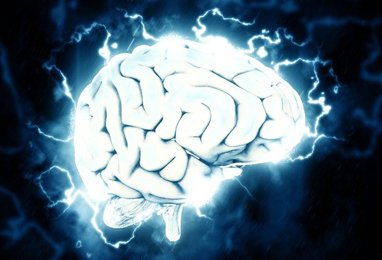 effects of thc on the brain