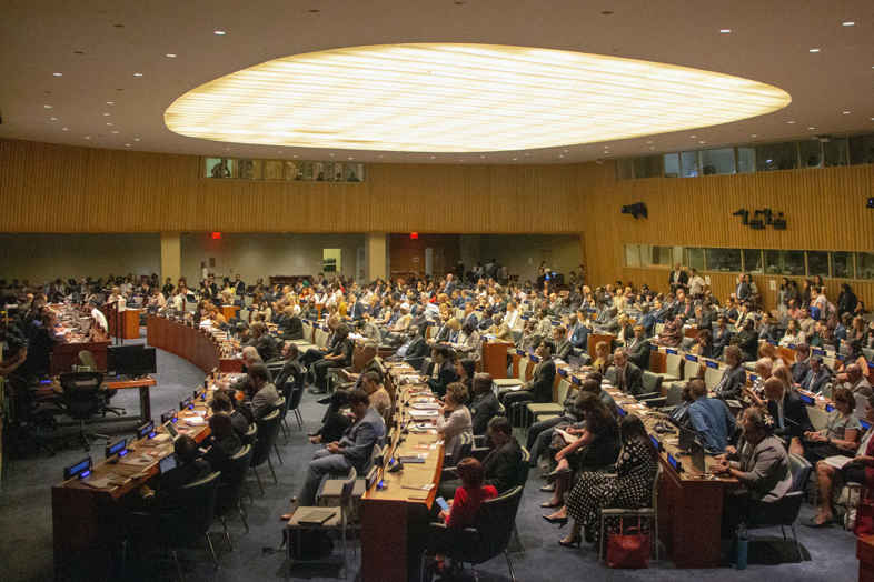 UN meeting on the properties of cannabis for medical use