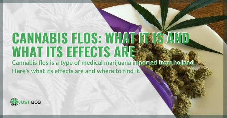 What is Flos cannabis and its effects