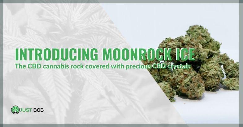 Introducing Moonrock Ice, the CBD cannabis rock covered with precious CBD crystals