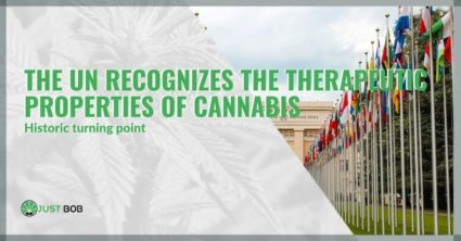 Historic turning point: the UN recognizes the therapeutic properties of cannabis