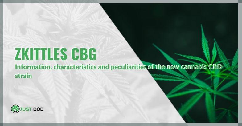 Zkittles CBG: information, characteristics and peculiarities of the new cannabis CBD strain