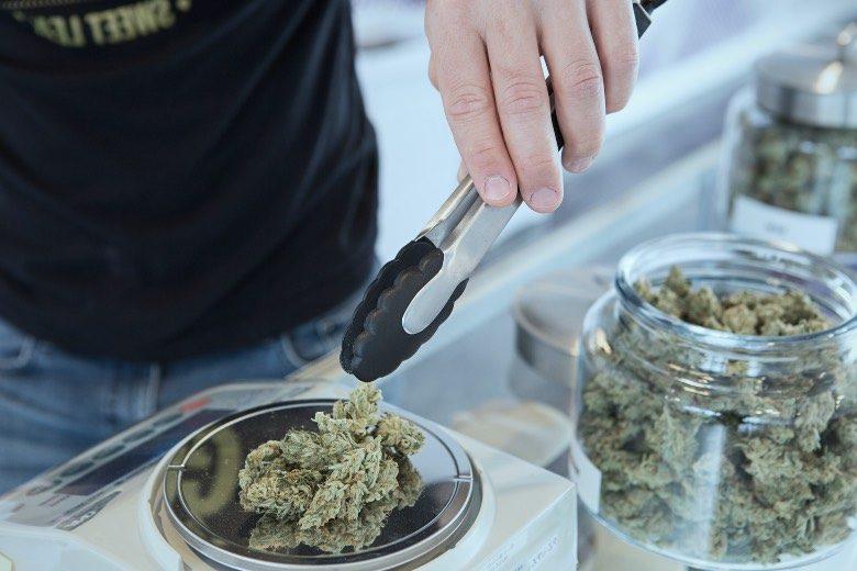Best cannabis strains at the Boerejongens Coffeeshop Center