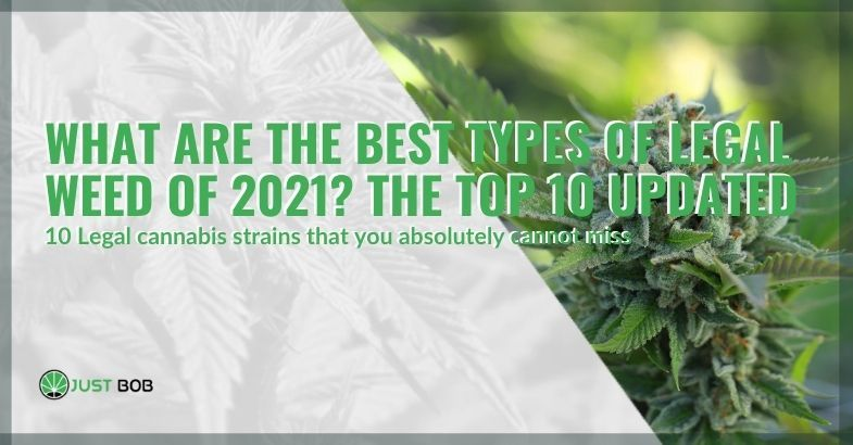 The best legal weed strains of 2021