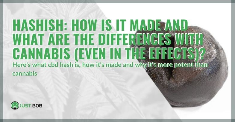 How light hash is made and the differences with cannabis