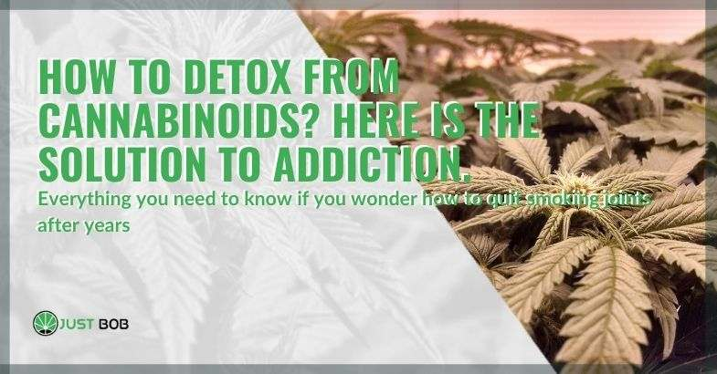 Here is the solution to detoxify from cannabinoids