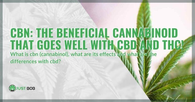 CBN, the beneficial cannabinoid