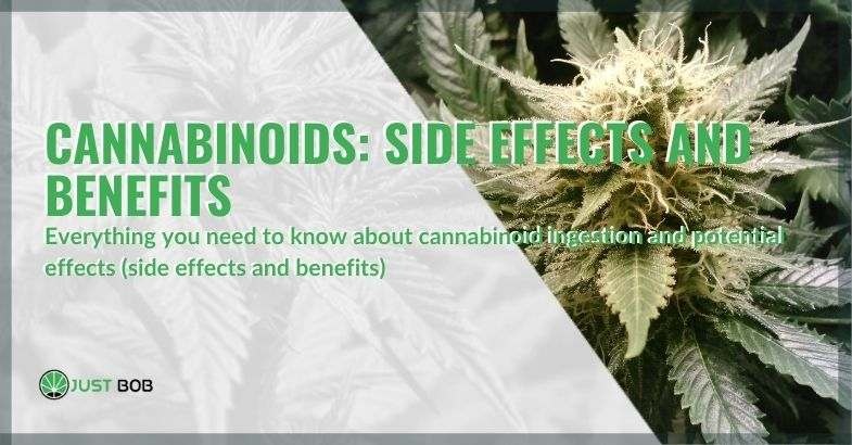 The benefits and side effects of cannabinoids
