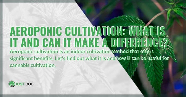 What is aeroponic cultivation and what advantages does it offer?