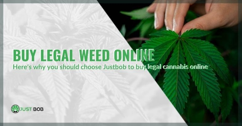 Why buy legal cannabis online at Justbob