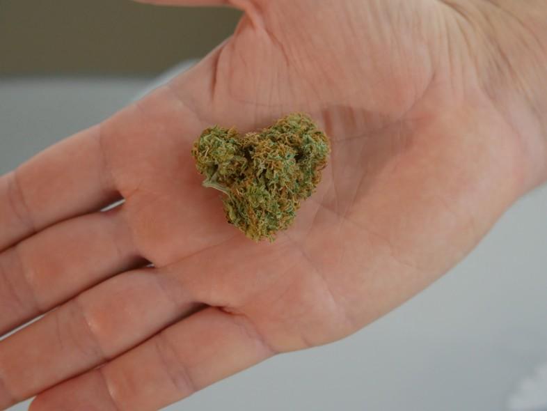 Quality legal marijuana