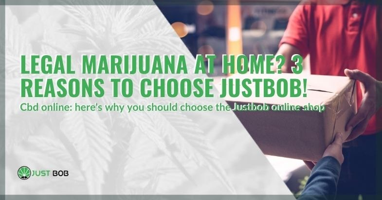 3 reasons to choose Justbob to have legal cannabis at home