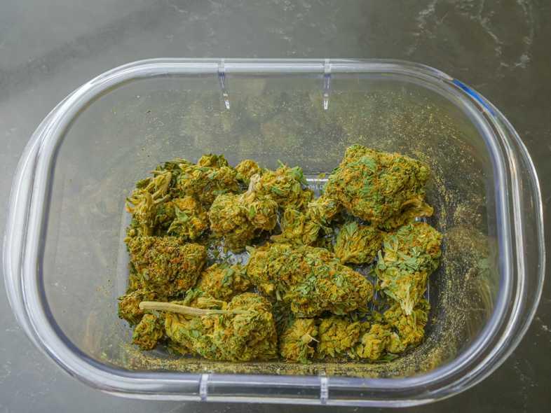 Where to buy cbd marijuana online?