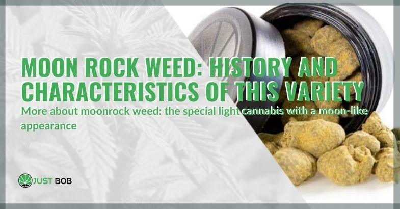 The history and characteristics of the Moonrock Weed variety