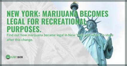 In New York, marijuana has become legal for recreational purposes.