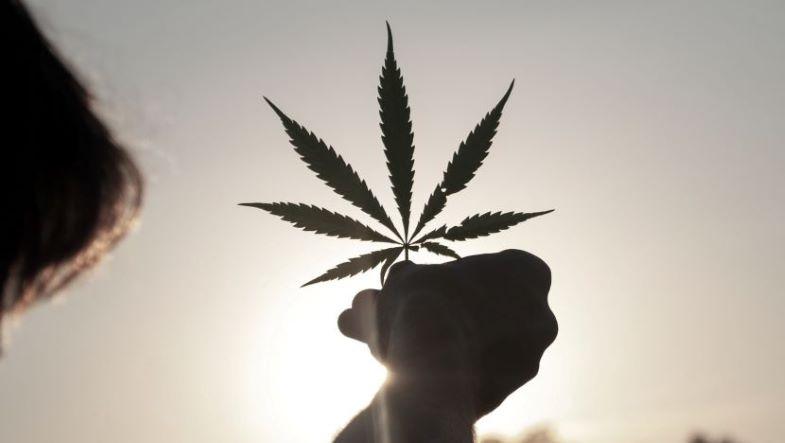 Amazon-position-towards-legalization-hemp