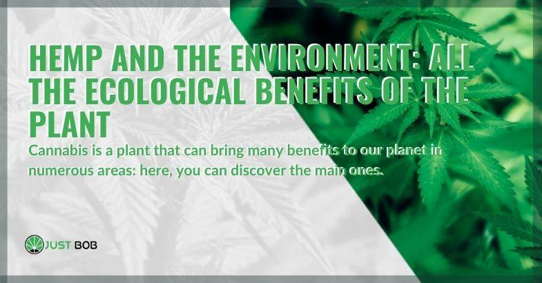 All the benefits of the hemp plant in the environment