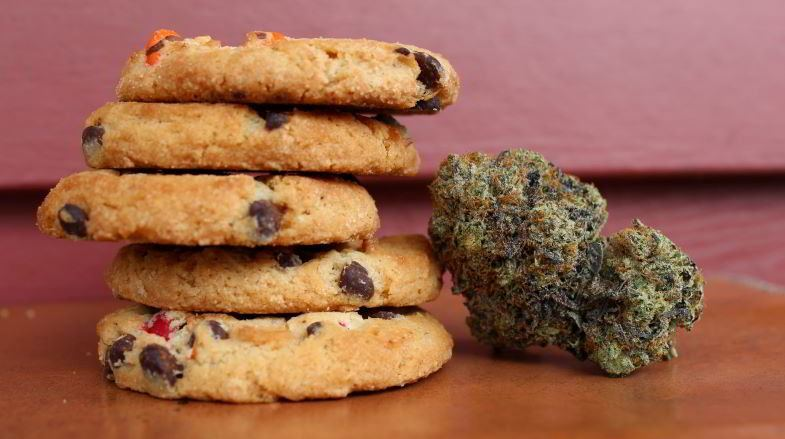 Hemp biscuits for food use