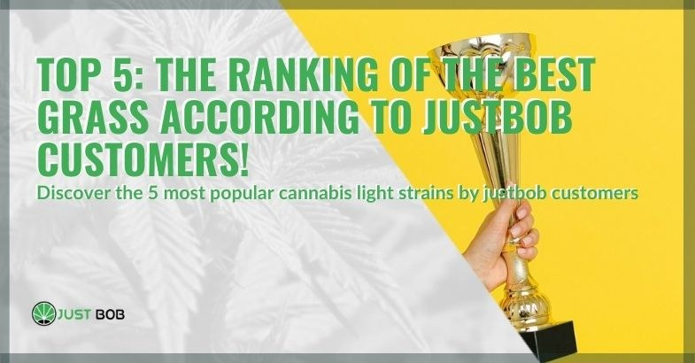 Here are the 5 best herbs according to Justbob customers